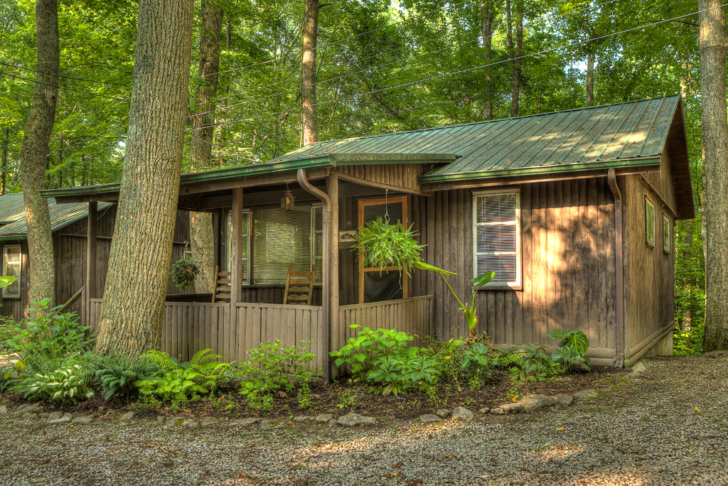 Cabin 14 Wooded Haven